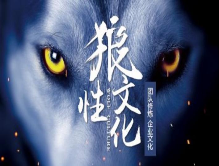 B1【打造狼性团队训练营2天】套餐:568元/人